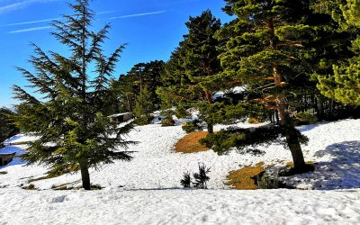 ¿Que ver y hacer en la Sierra de Madrid?